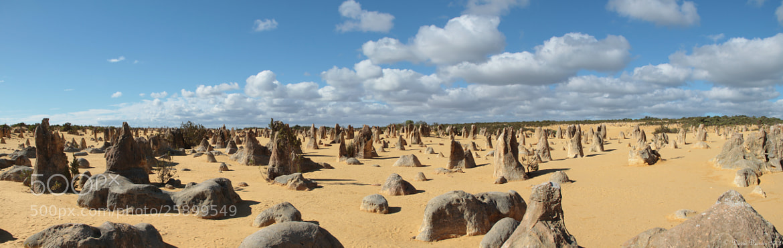 Photograph Pinnacles Desert, WA, Australia by David Decroix on 500px
