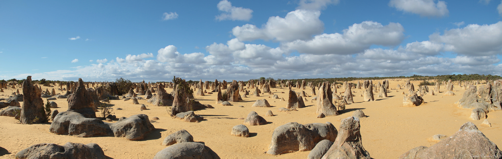 Photograph Pinnacles Desert, WA, Australia by David Decroix on 500px