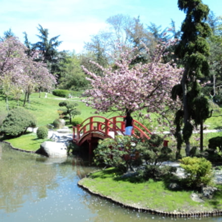 Toulouse Jardin japonais, Sony DSC-W310