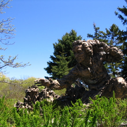 Bronze Statue, Canon POWERSHOT A75
