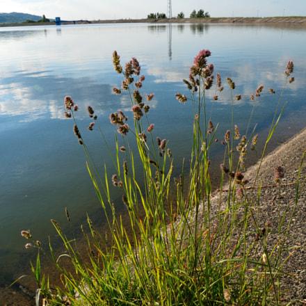 lake, Nikon D300S, Sigma 18-200mm F3.5-6.3 DC OS HSM