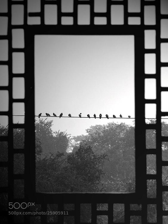Photograph Window's - 13 by Saurabh Desai on 500px