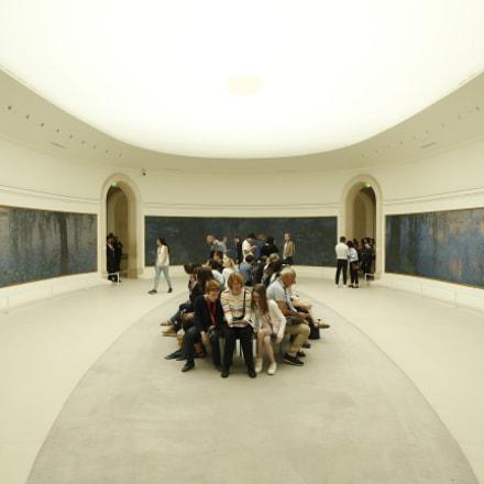 musee de l'orangerie, Canon EOS-1D X, Canon EF 24-70mm f/2.8L