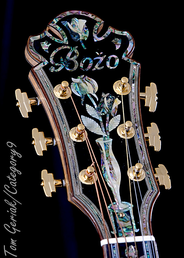 Trademark oversized headstock of master luthier Bozo Podunavac. Notice the flower stems descending into the vase and the herringbone purfling around the outer edges.
