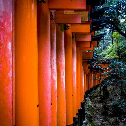 Fushimi Inari-taisha, Nikon COOLPIX S6000