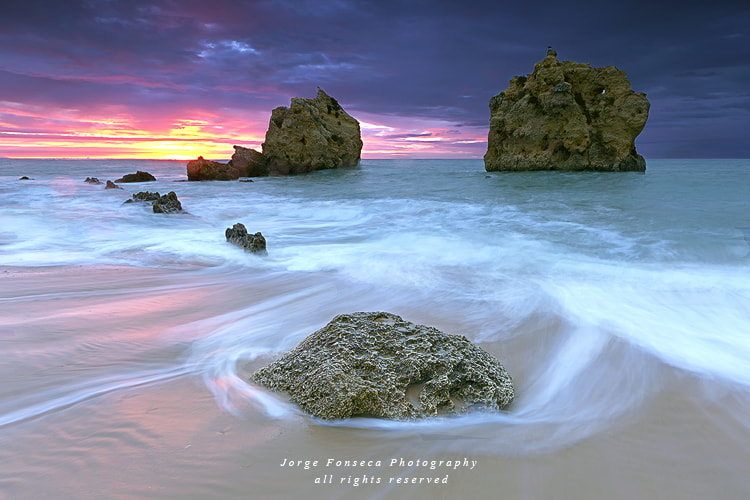 Photograph Thus was born the Day by Jorge Fonseca on 500px