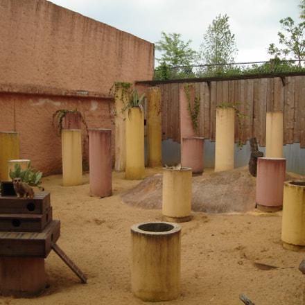 Columns in a zoo, Sony DSC-L1