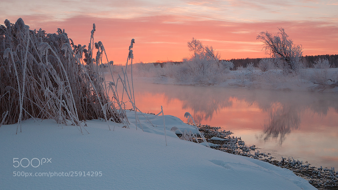 Photograph salmon-colored dawn  by Marat Akhmetvaleev on 500px