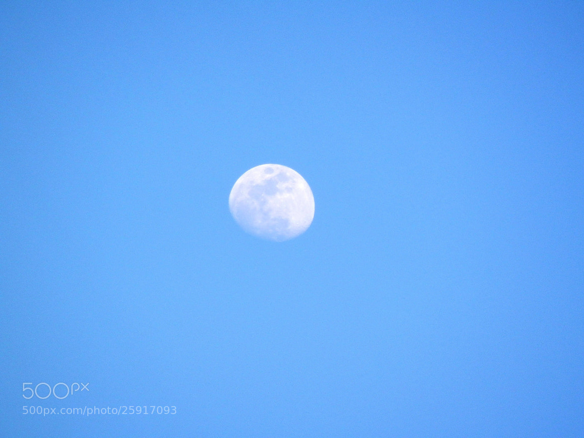 Photograph Luna en cielo azul  by Victor Palmitesta on 500px