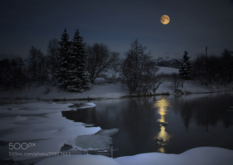 Photograph Moonshine. by Kent Lennart Vassdal on 500px