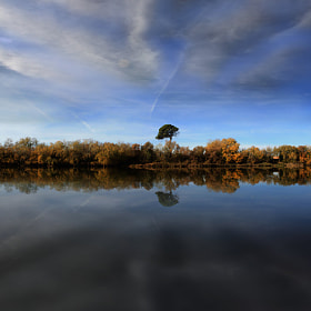 Ebro 101
