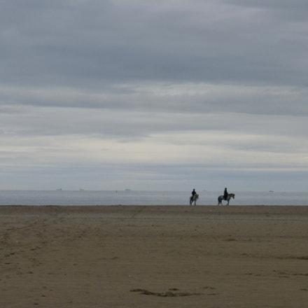 Horses on the beach, Panasonic DMC-TZ36