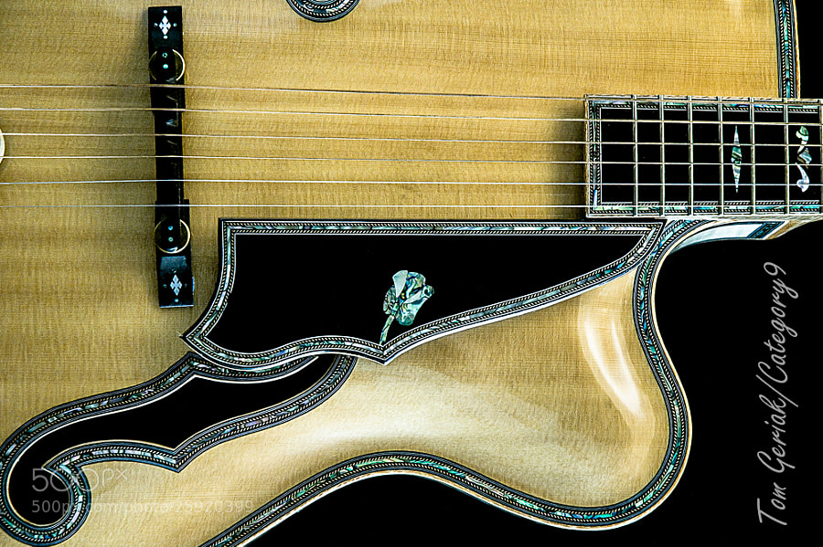 Another example of the mastery of the luthier's craft .