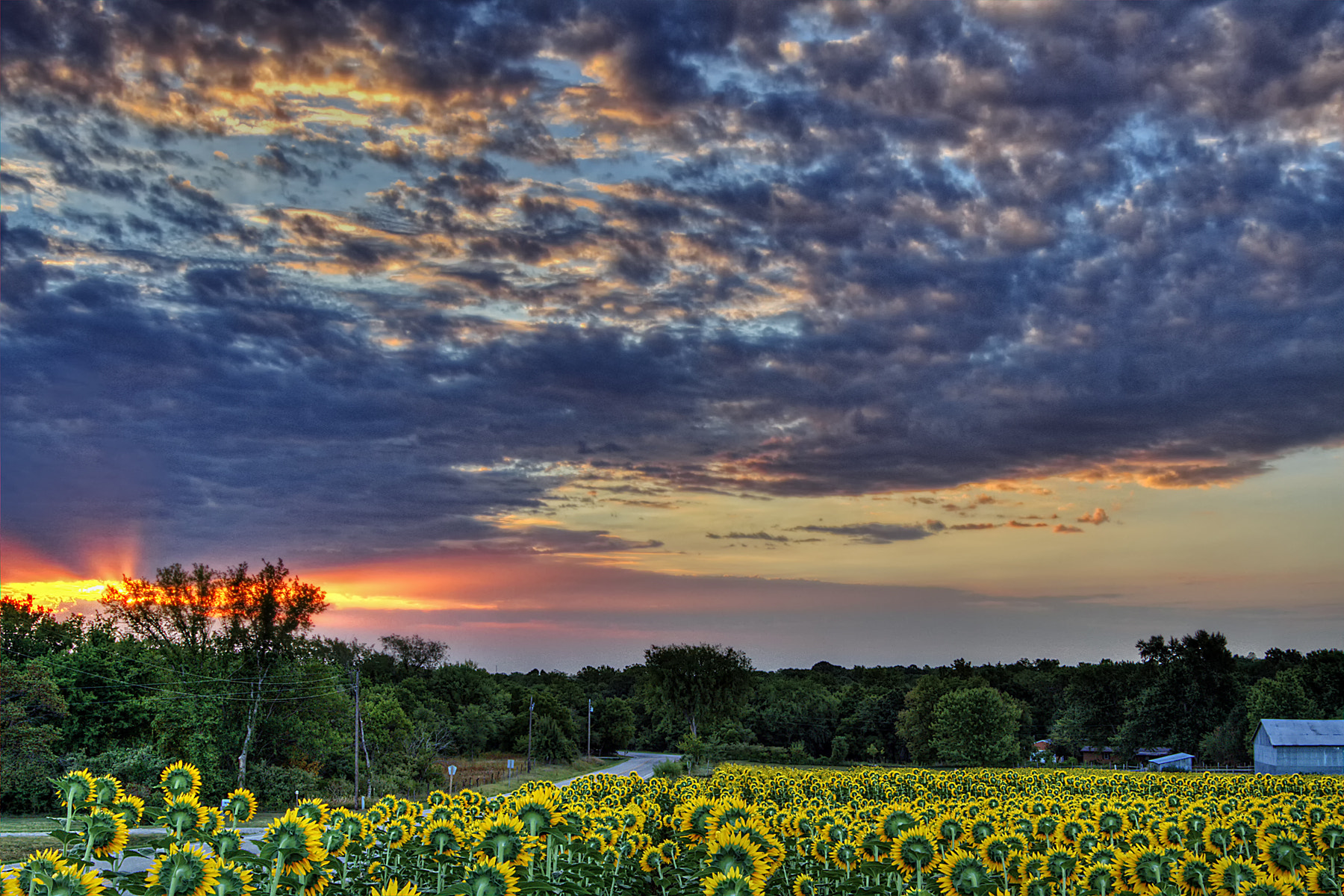 """Photograph """"Here Comes The Sun"""" by Scott Evers on 500px"""