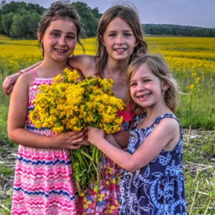 Yellow Field, Nikon COOLPIX P7100