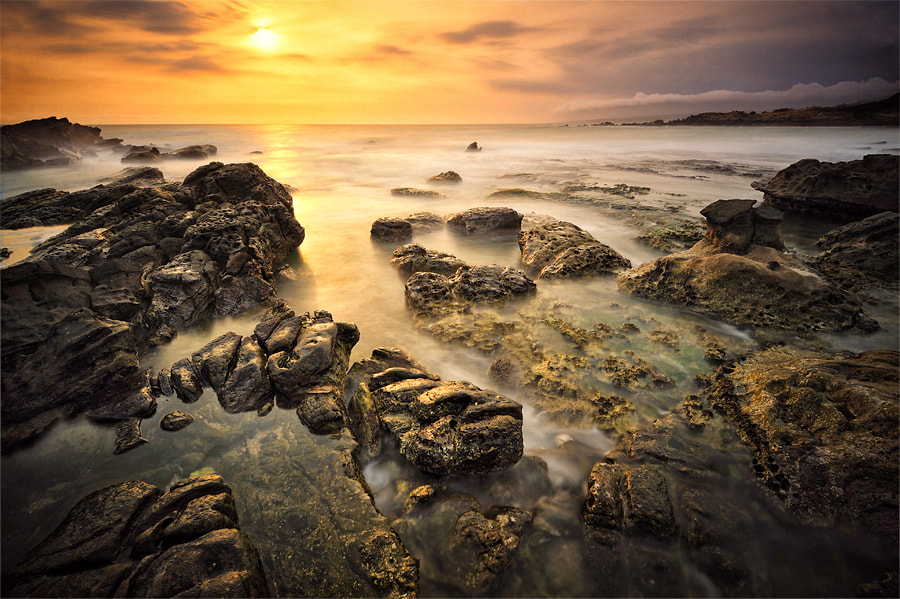 Photograph Golden Sunset by Gregorius Suhartoyo on 500px