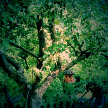 Garden lights, Canon EOS 1100D, Canon EF-S 18-55mm f/3.5-5.6 IS II