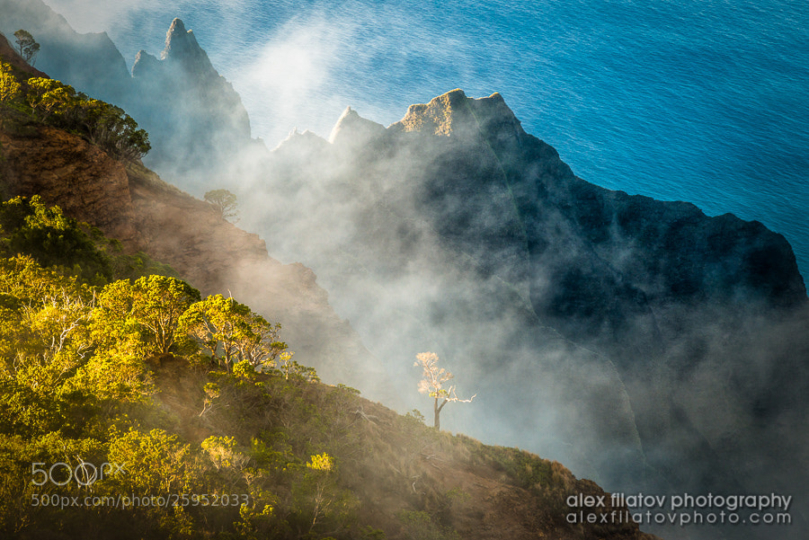 Photograph Kalalau by Alex Filatov on 500px
