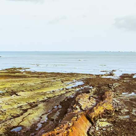 Panama Exposed Ocean Floor, Canon POWERSHOT SX230 HS