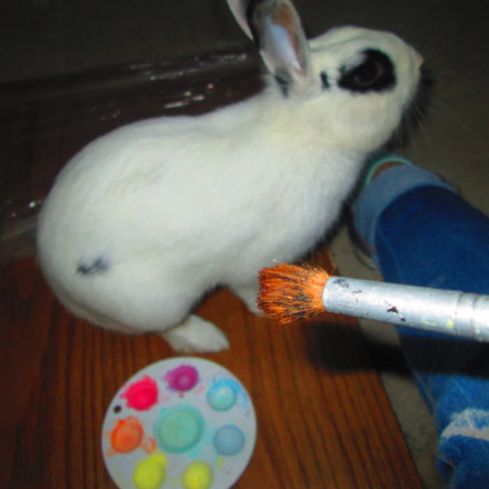 Painting a rabbit..., Canon POWERSHOT A2300