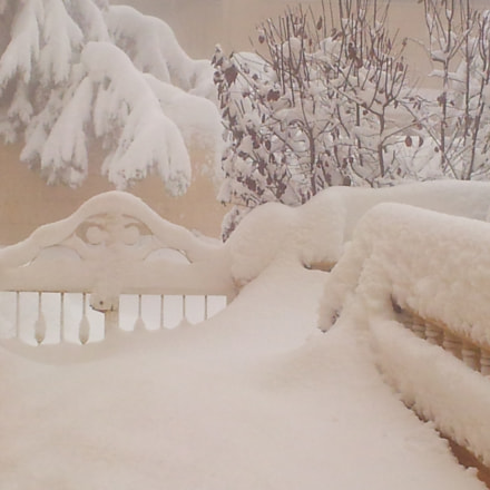 SNOW, Samsung Galaxy S2