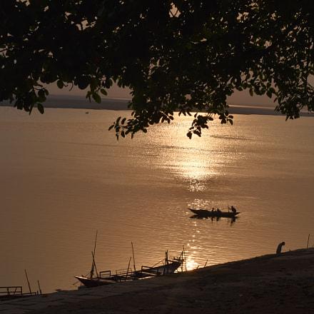 evening nature.JPG, Nikon D5500, AF-S Nikkor 50mm f/1.8G