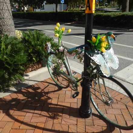 Bike, Sarasota, Fl,, Nikon COOLPIX AW120