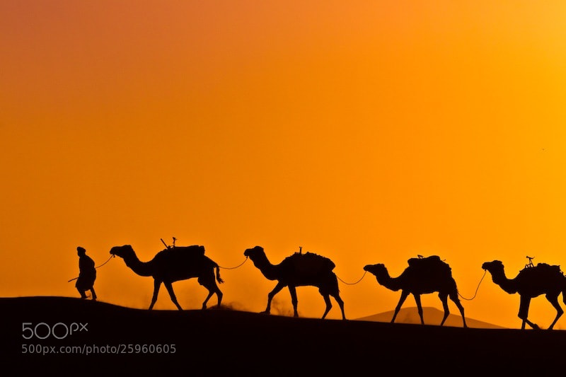 Photograph Marocco sunset by Martijn den Breejen on 500px