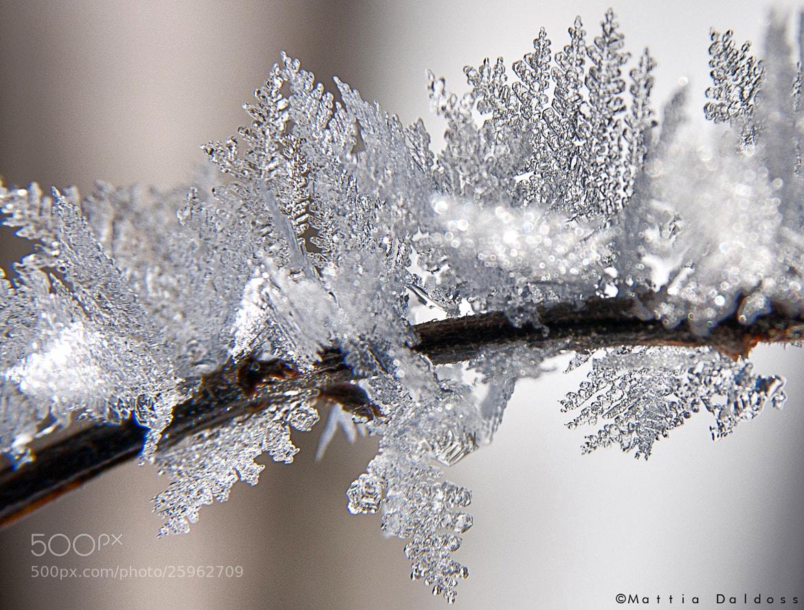 Photograph Crystal by Mattia Daldoss on 500px