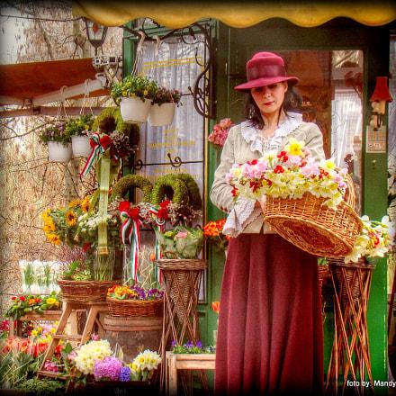 florist girl, Sony DSC-H50