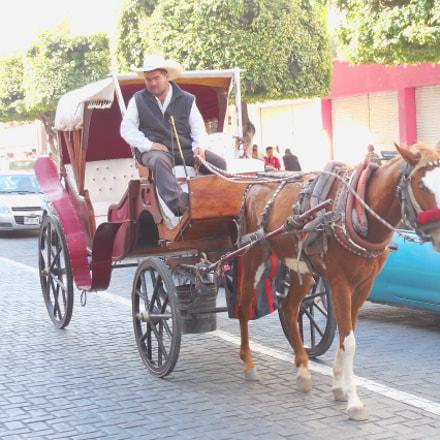horse cabby (Guadalajara, Mexico), Nikon COOLPIX L610