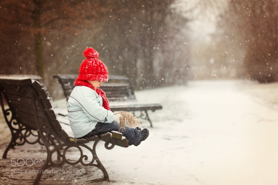 Photograph Winter by Tatyana Tomsickova on 500px