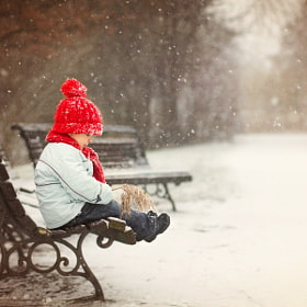 Winter by Tatyana Tomsickova (tracy-t)) on 500px.com