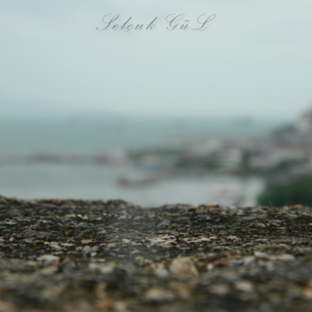 DSCN, Nikon COOLPIX L310