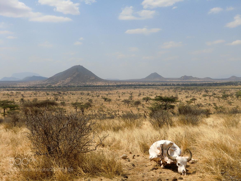Photograph Samburu by Matteo Giovanni on 500px