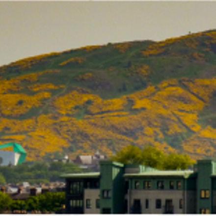 Capital city backdrop, Panasonic DMC-TZ7