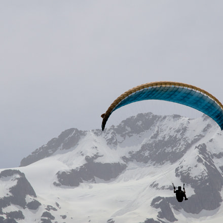 Paraglider in alps, Sony ILCA-68
