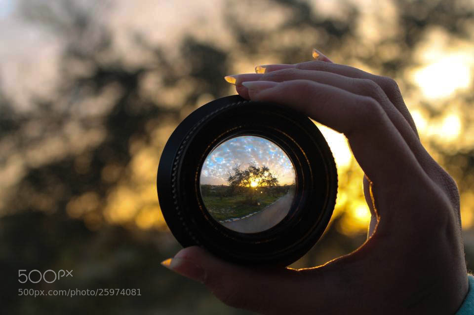 Photograph Into The Fish Eye by Yuval Moran on 500px