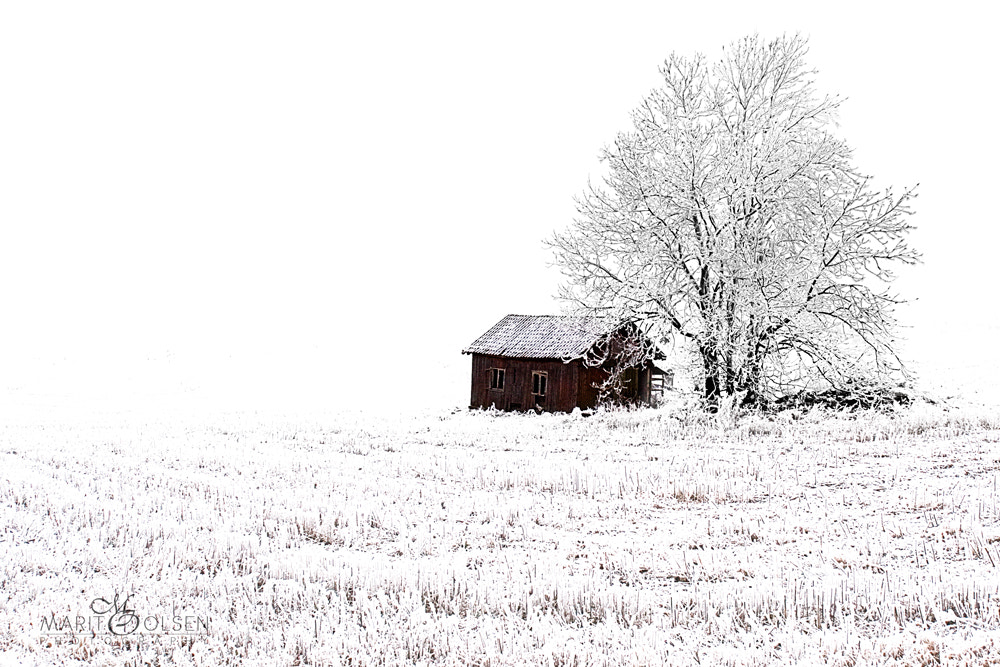 Photograph The little red house by Marit Olsen on 500px