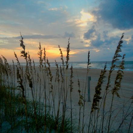 Sea Oats Sunrise, Nikon COOLPIX AW100