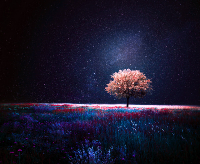 Photograph night  by Barbara Florczyk on 500px
