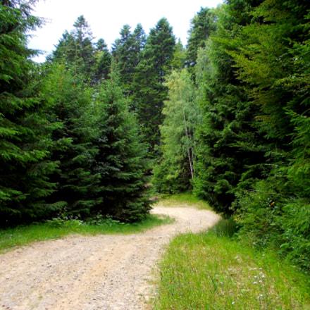 follow your path, Nikon COOLPIX L23