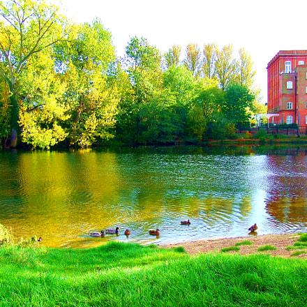 Dedham pond, Fujifilm FinePix Z3