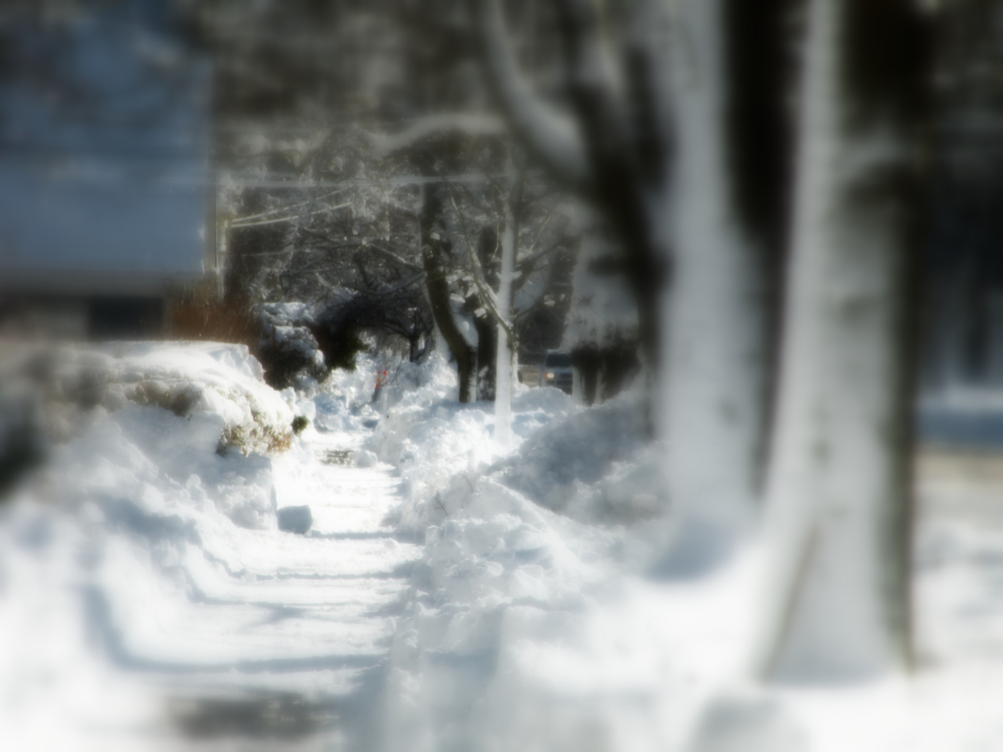 Photograph After the Blizzard by Jay Santos on 500px
