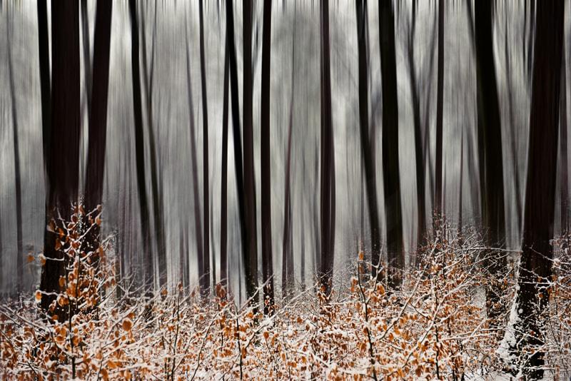 Photograph A wintersday by Johann Klugkist on 500px
