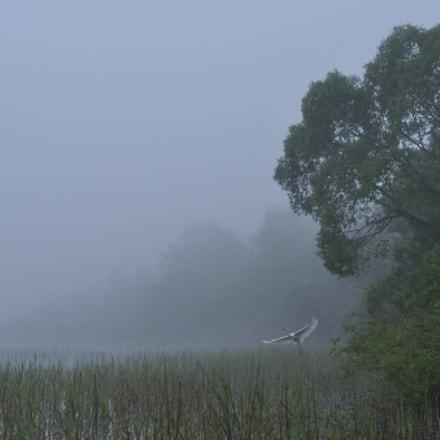 Lake Kasplya, Nikon D90, AF Nikkor 35mm f/2D