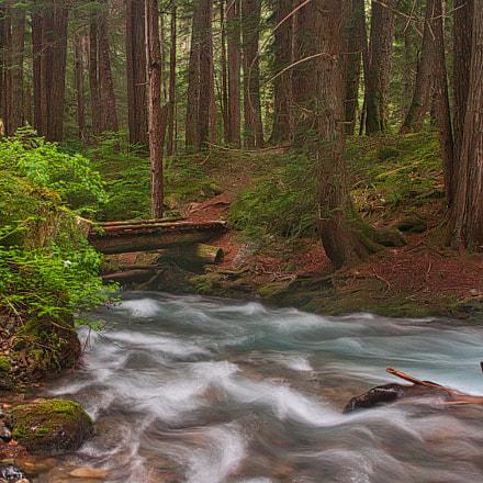 Cascade Creek, Nikon D300S, Sigma 17-70mm F2.8-4 DC Macro OS HSM | C