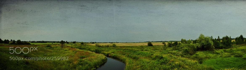 Photograph Summer Fields by SamueL Demon on 500px