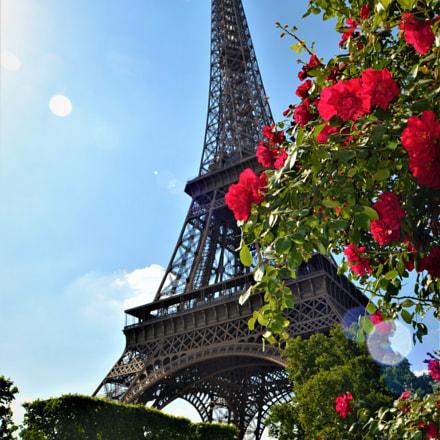 Mme Eiffel, Nikon D3100, AF-S DX Zoom-Nikkor 18-55mm f/3.5-5.6G ED