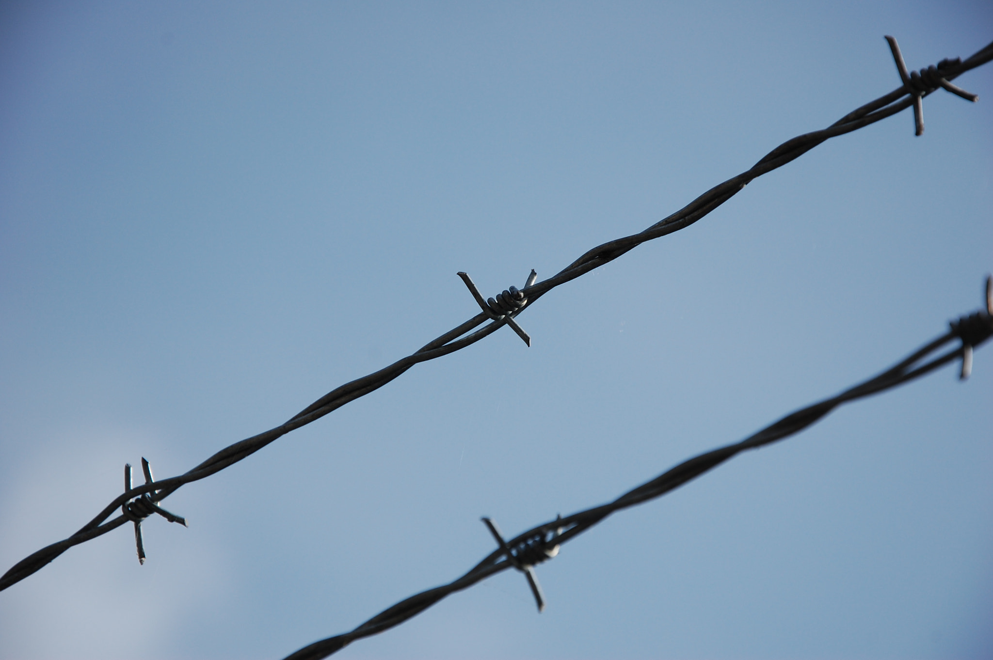 Photograph Barbed Wire by Phillip Anderson on 500px